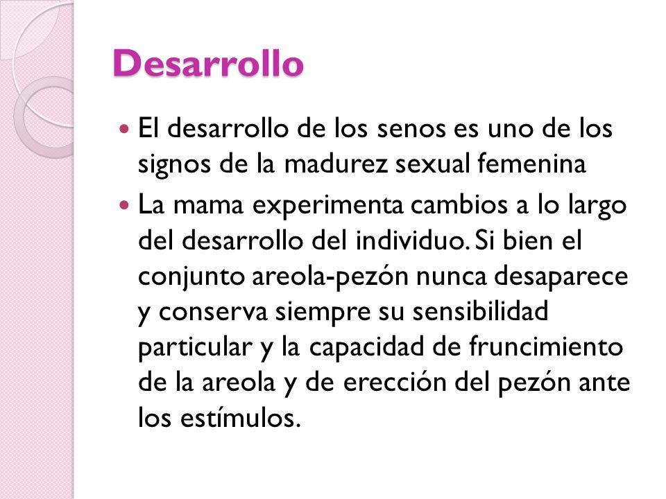 Desarrollo El desarrollo de los senos es uno de los signos de la madurez sexual femenina.