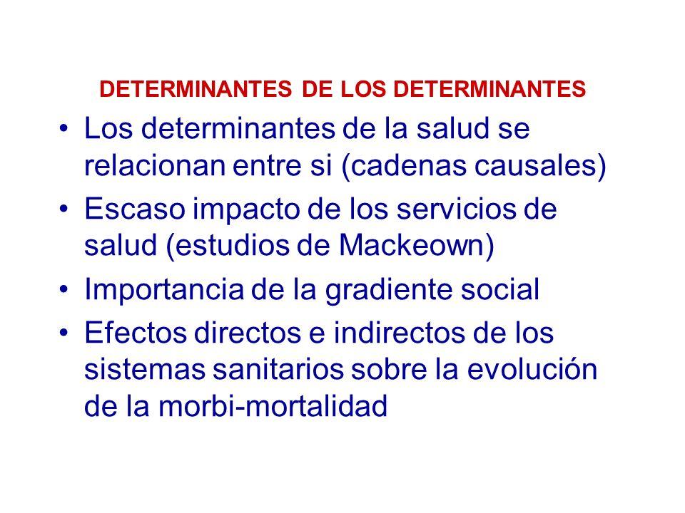 DETERMINANTES DE LOS DETERMINANTES
