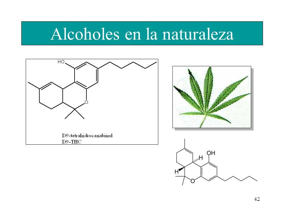 Alcoholes en la naturaleza