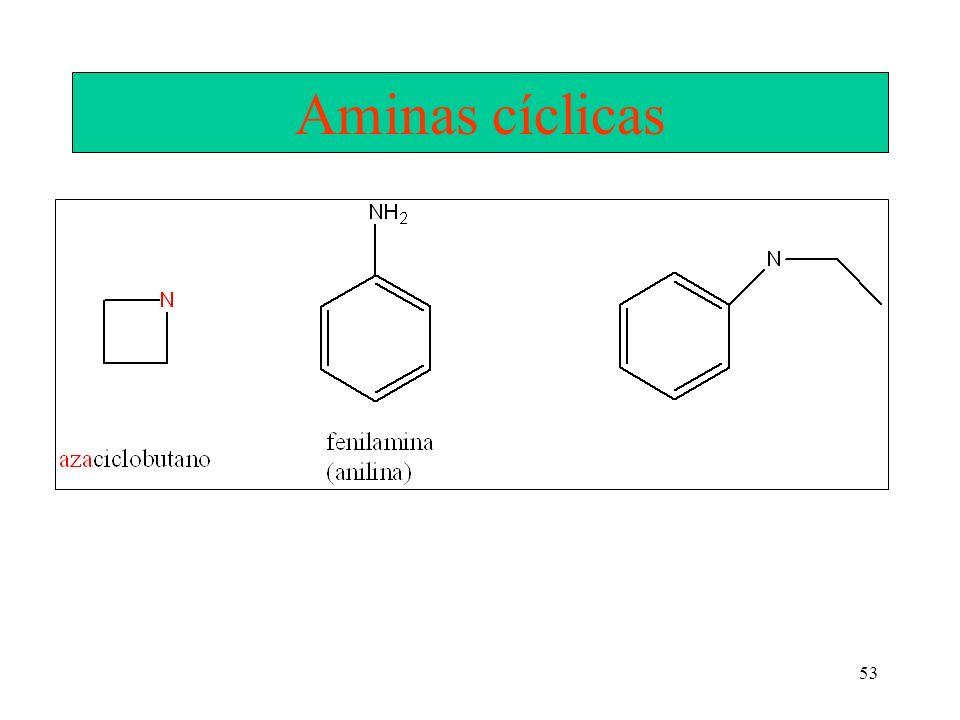 Aminas cíclicas