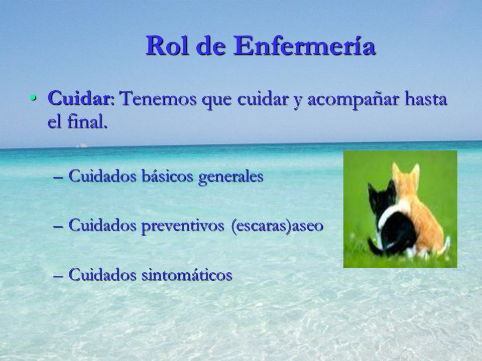 Rol de Enfermería Cuidar: Tenemos que cuidar y acompañar hasta el final. Cuidados básicos generales.