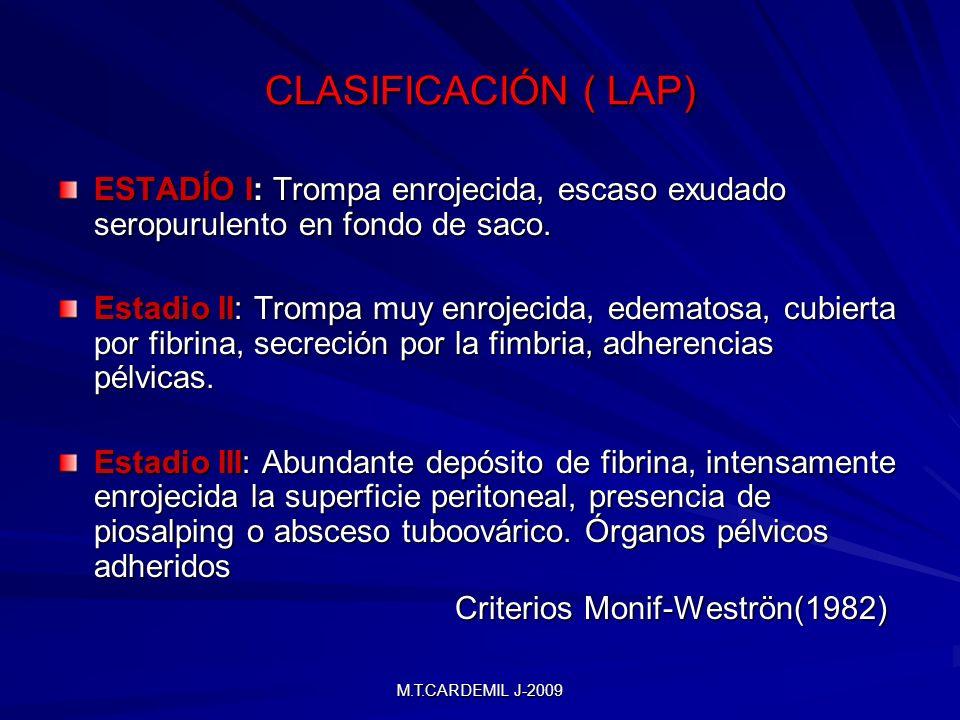CLASIFICACIÓN ( LAP) ESTADÍO I: Trompa enrojecida, escaso exudado seropurulento en fondo de saco.