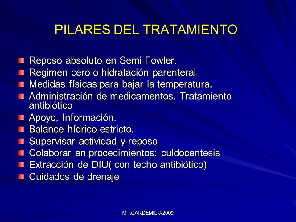 PILARES DEL TRATAMIENTO