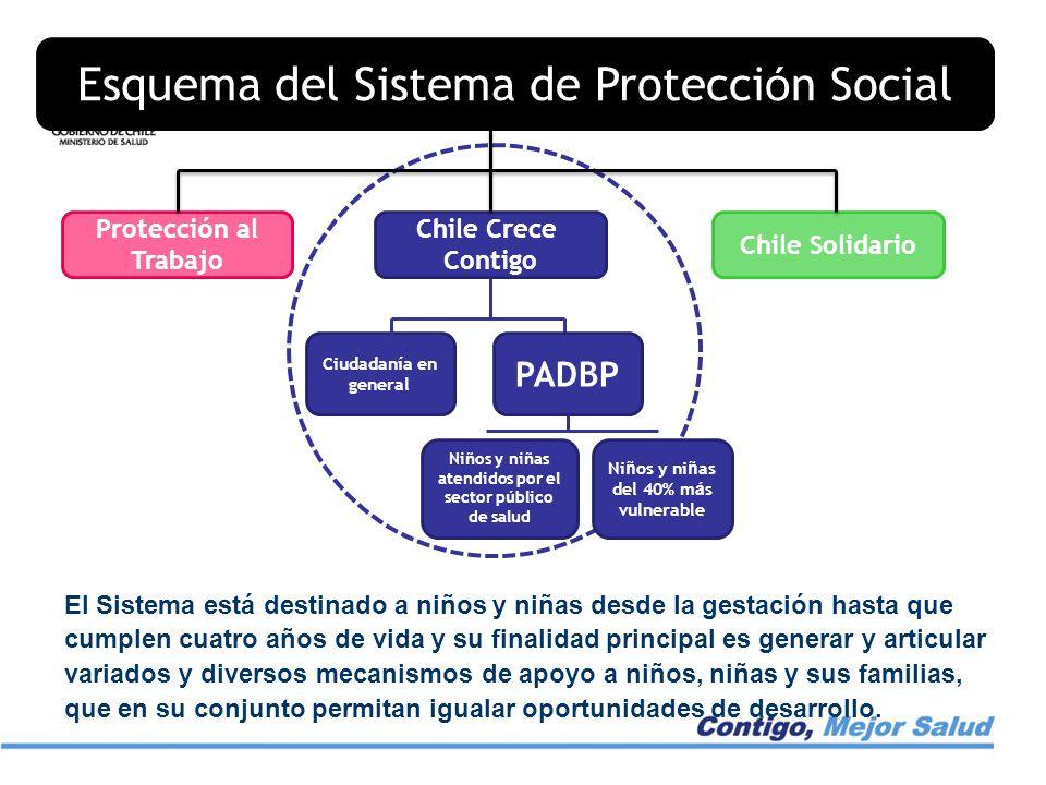 Esquema del Sistema de Protección Social