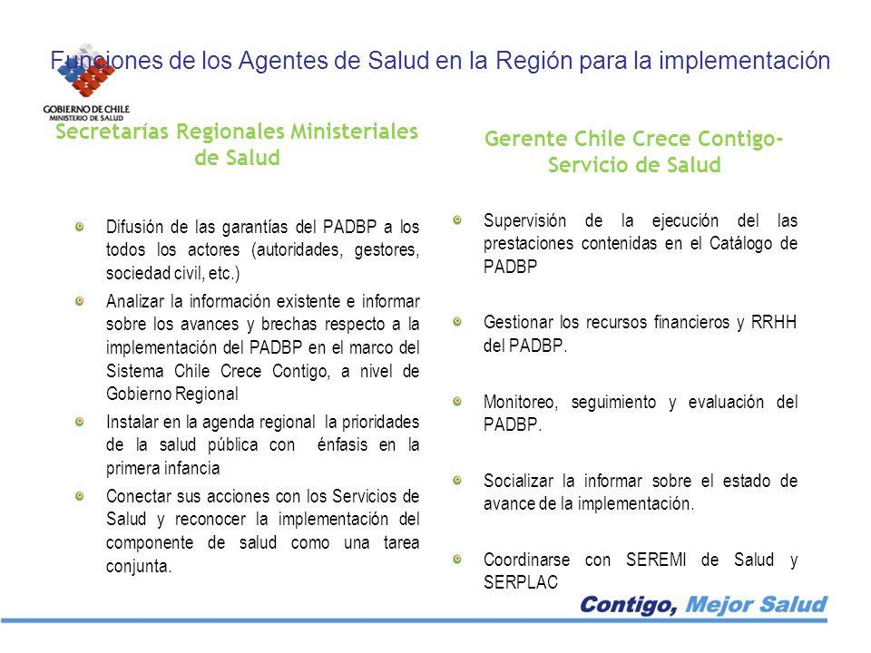 Funciones de los Agentes de Salud en la Región para la implementación