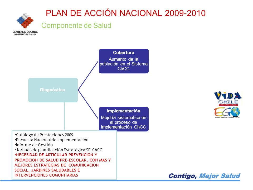 PLAN DE ACCIÓN NACIONAL 2009-2010