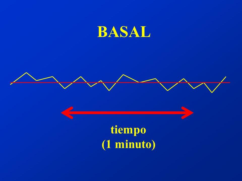 BASAL tiempo (1 minuto)