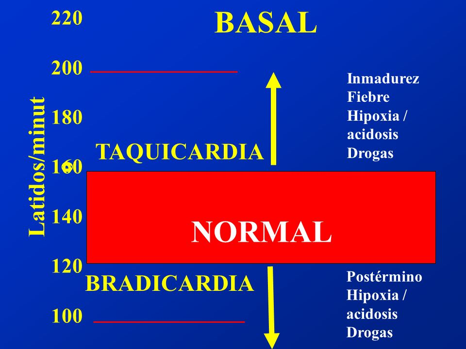 BASAL NORMAL Latidos/minuto TAQUICARDIA BRADICARDIA 220 200 180 160