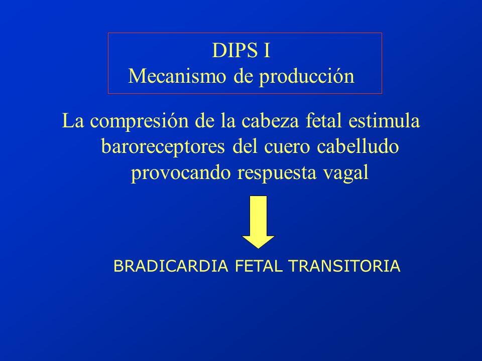 DIPS I Mecanismo de producción