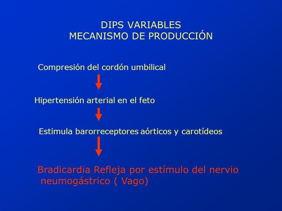 DIPS VARIABLES MECANISMO DE PRODUCCIÓN