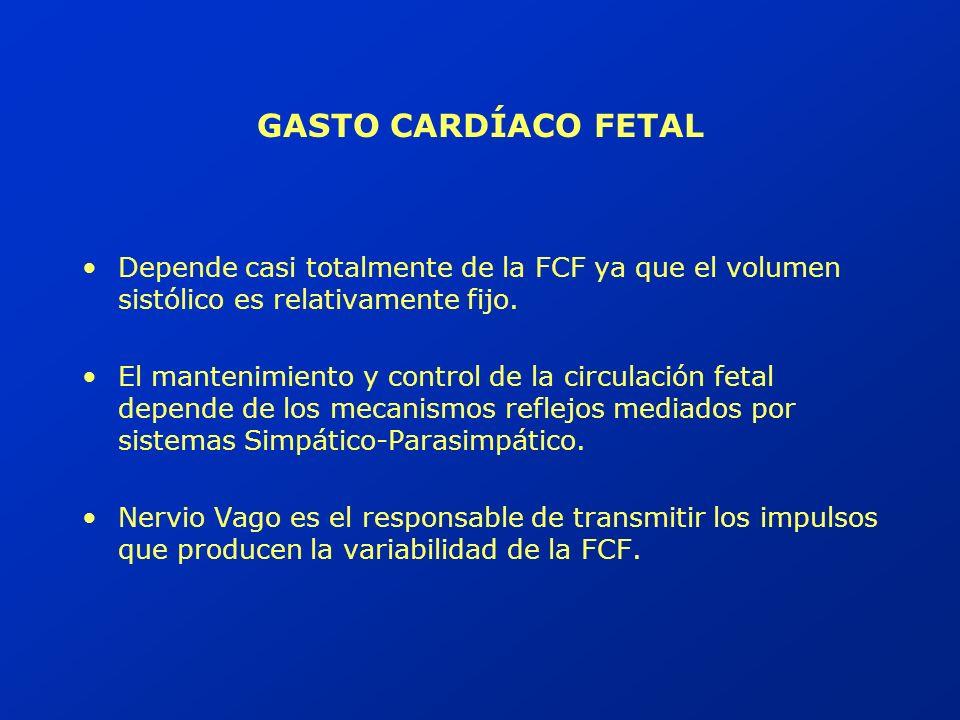 GASTO CARDÍACO FETAL Depende casi totalmente de la FCF ya que el volumen sistólico es relativamente fijo.