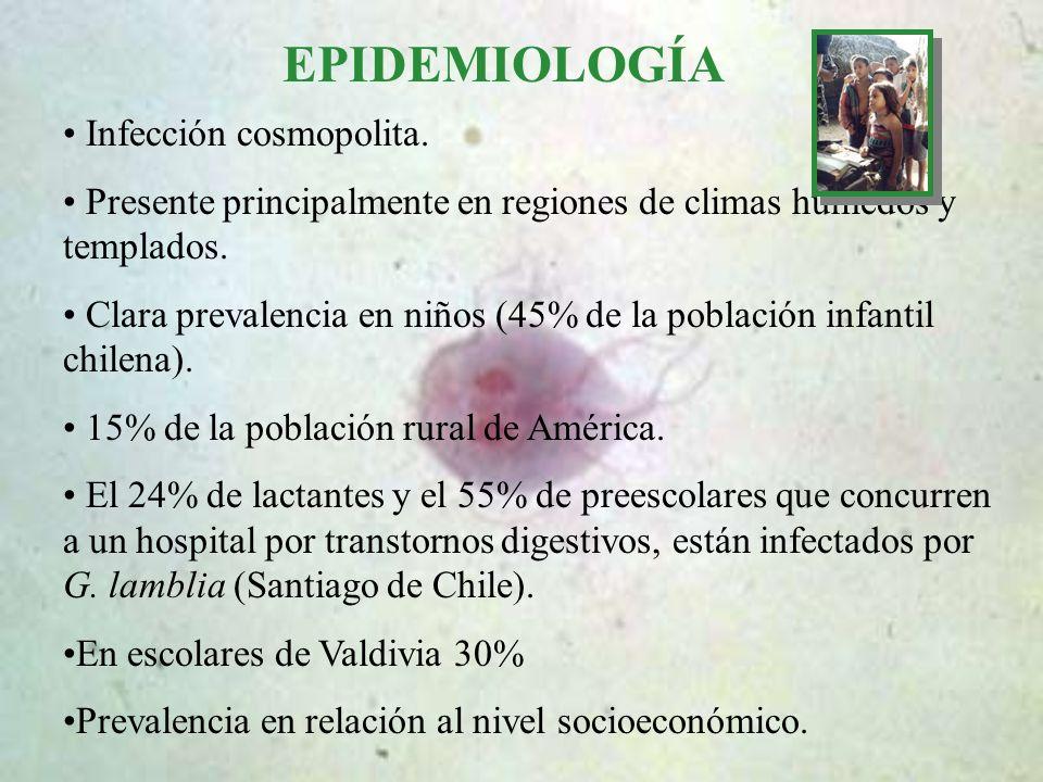 EPIDEMIOLOGÍA Infección cosmopolita.