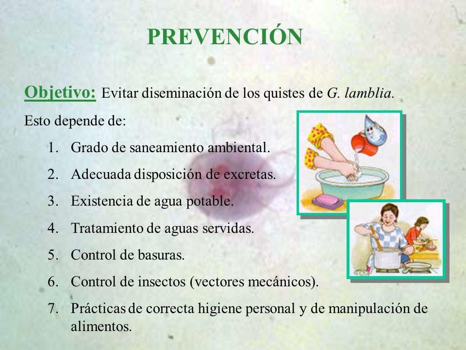 PREVENCIÓN Objetivo: Evitar diseminación de los quistes de G. lamblia.