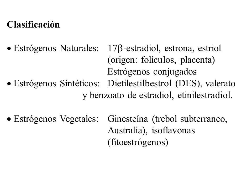 Clasificación Estrógenos Naturales: 17-estradiol, estrona, estriol. (origen: folículos, placenta)