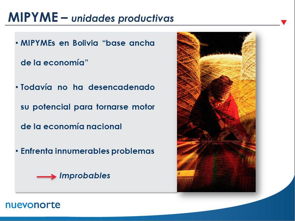 MIPYME – unidades productivas