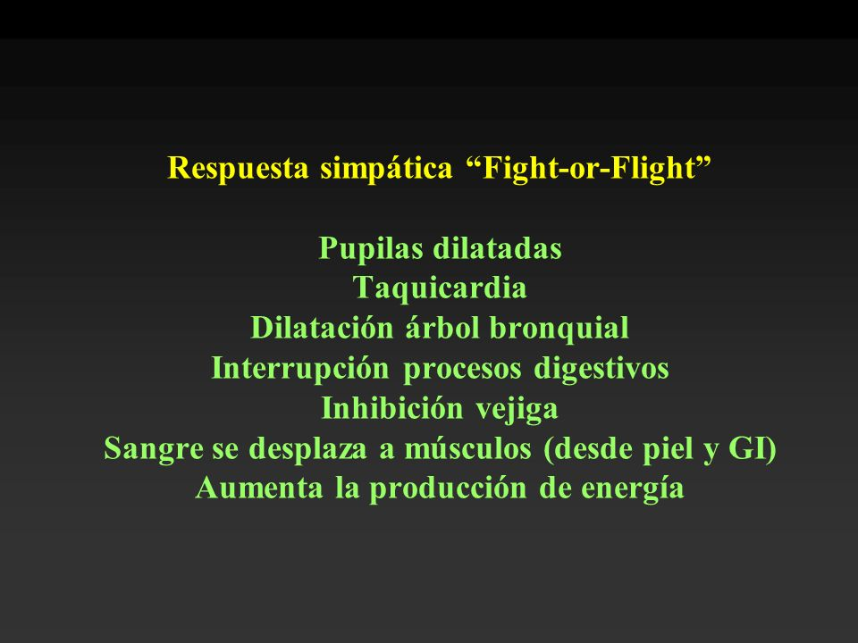 Respuesta simpática Fight-or-Flight Pupilas dilatadas Taquicardia Dilatación árbol bronquial Interrupción procesos digestivos Inhibición vejiga Sangre se desplaza a músculos (desde piel y GI) Aumenta la producción de energía