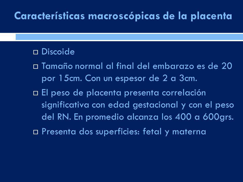 Características macroscópicas de la placenta