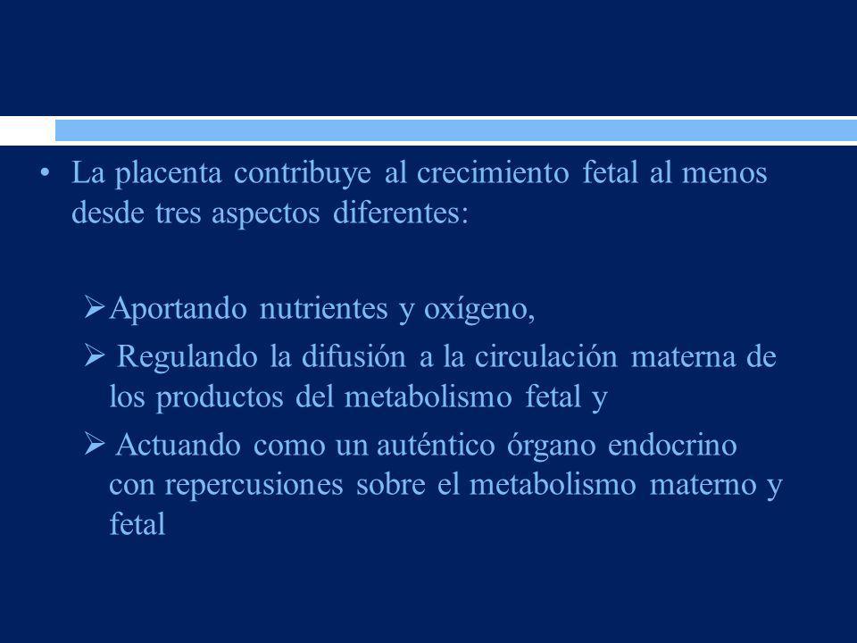 La placenta contribuye al crecimiento fetal al menos desde tres aspectos diferentes: