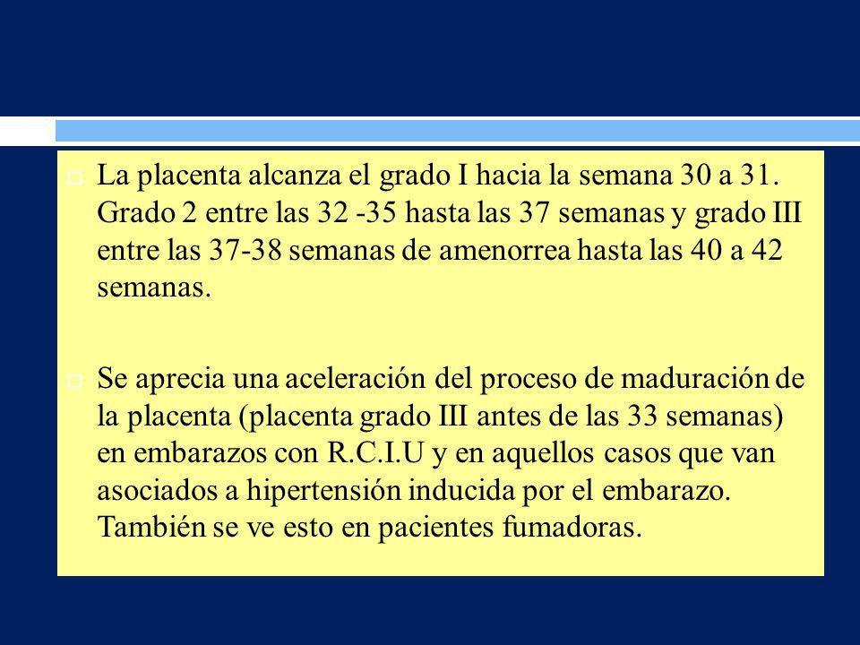 La placenta alcanza el grado I hacia la semana 30 a 31