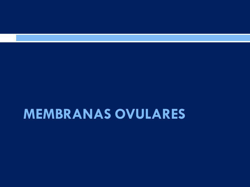 MEMBRANAS OVULARES