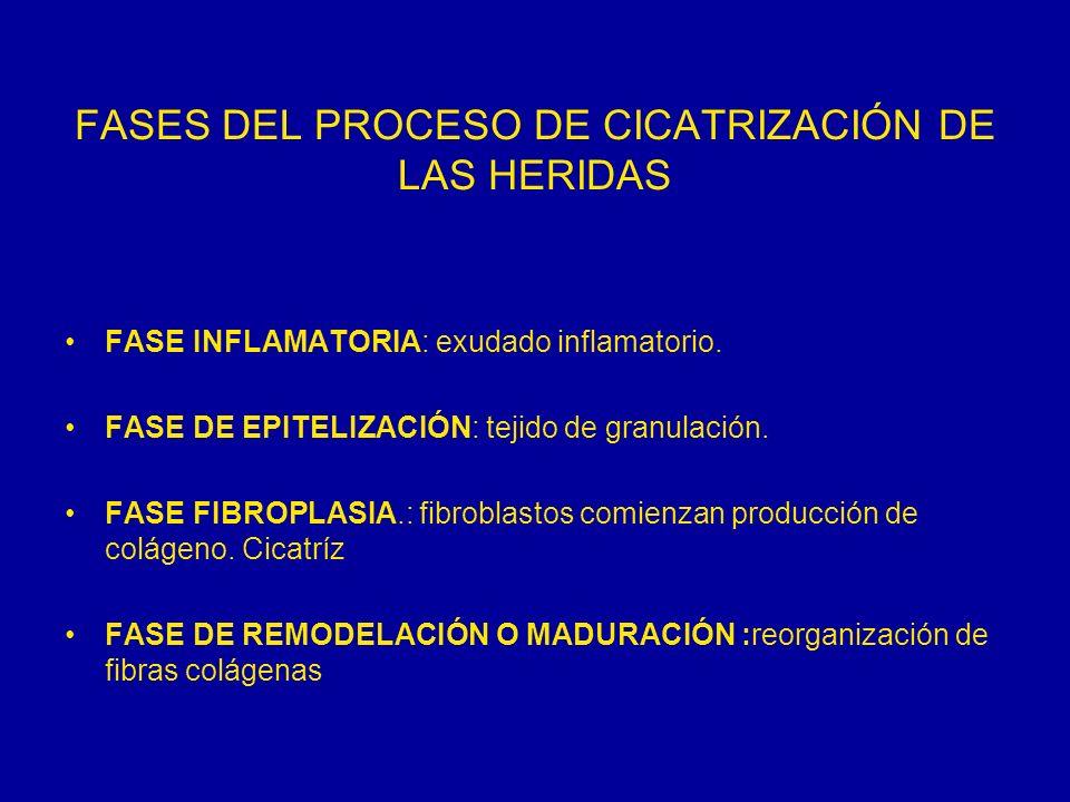 FASES DEL PROCESO DE CICATRIZACIÓN DE LAS HERIDAS