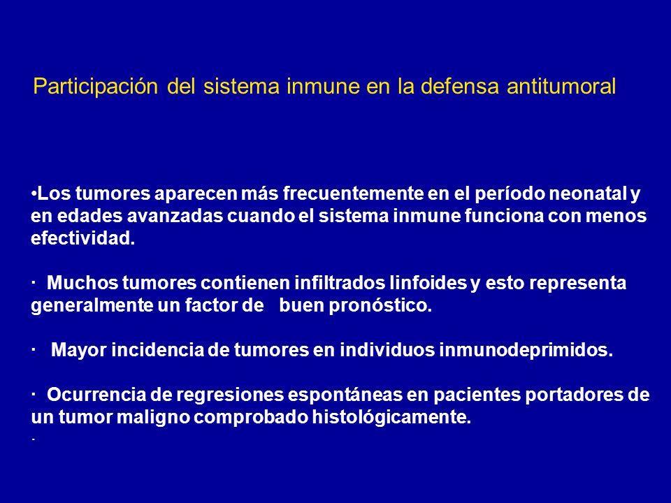 Participación del sistema inmune en la defensa antitumoral
