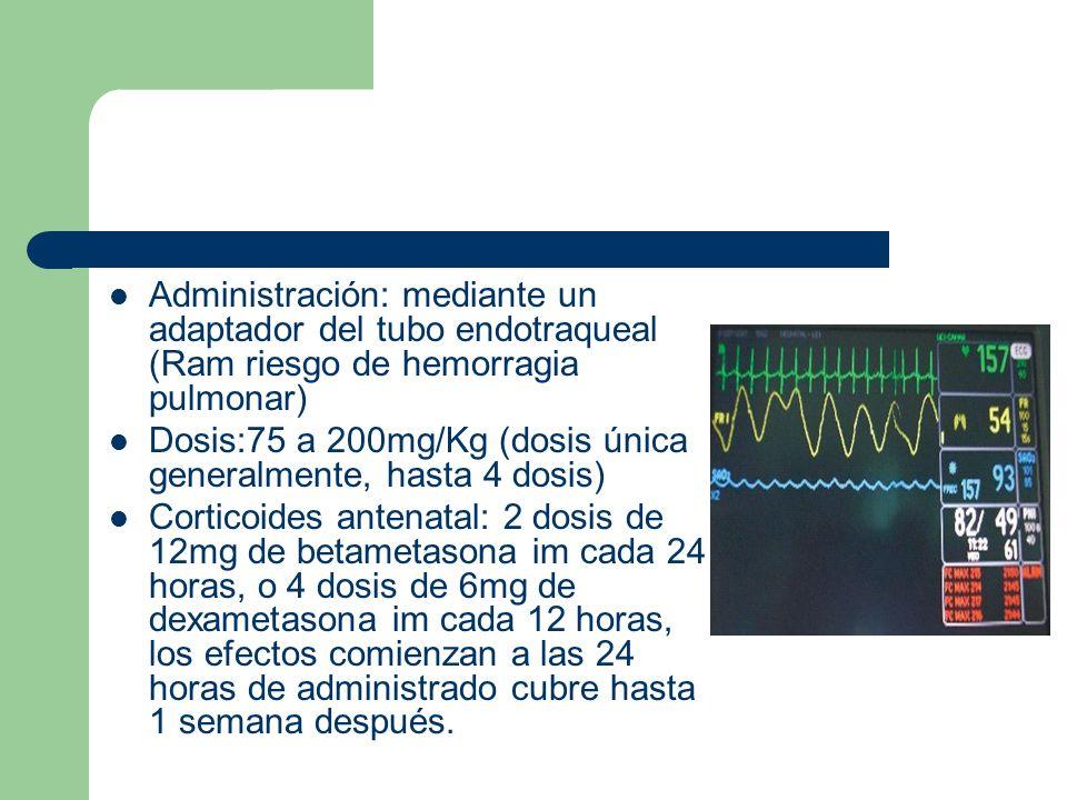 Administración: mediante un adaptador del tubo endotraqueal (Ram riesgo de hemorragia pulmonar)