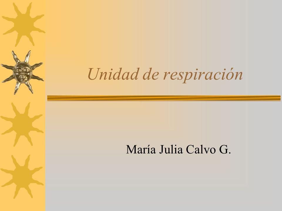 Unidad de respiración María Julia Calvo G.