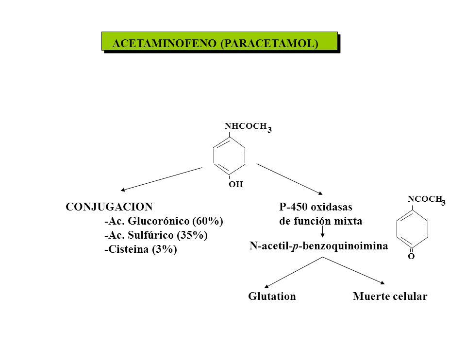 ACETAMINOFENO (PARACETAMOL)