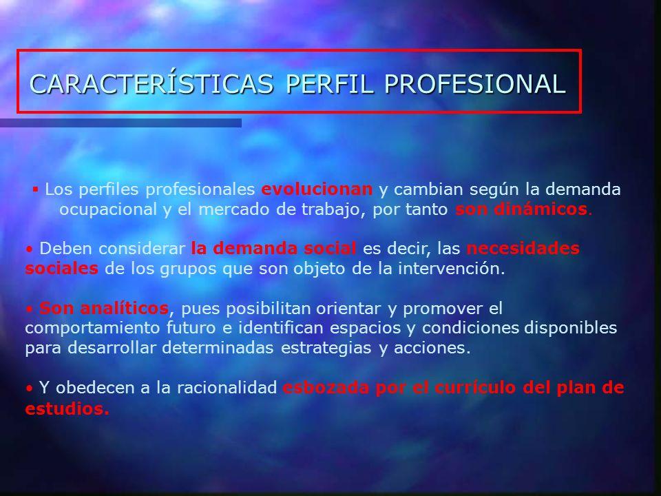 CARACTERÍSTICAS PERFIL PROFESIONAL