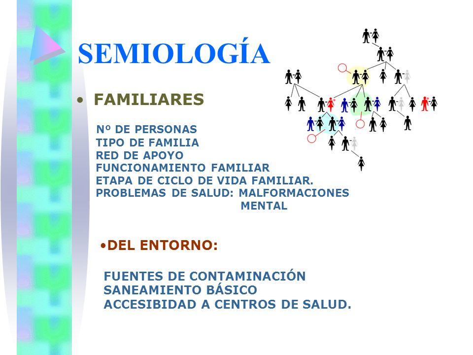 SEMIOLOGÍA FAMILIARES DEL ENTORNO: Nº DE PERSONAS