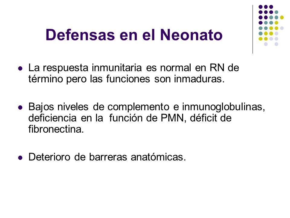 Defensas en el Neonato La respuesta inmunitaria es normal en RN de término pero las funciones son inmaduras.
