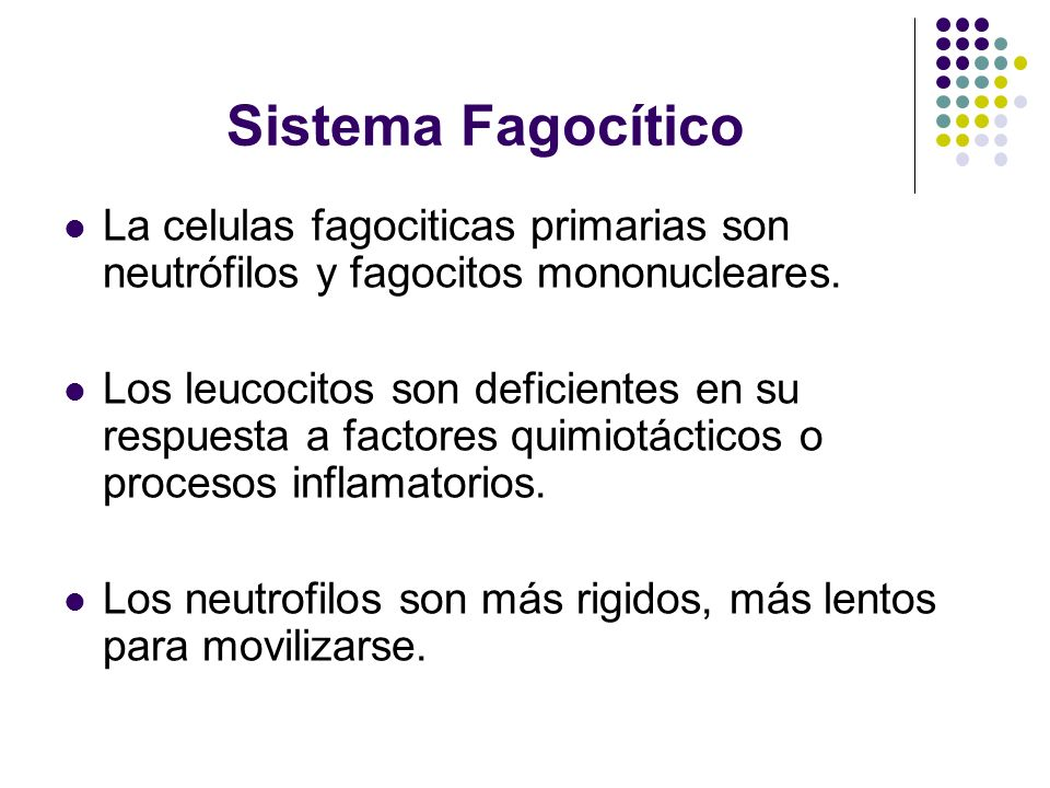 Sistema Fagocítico La celulas fagociticas primarias son neutrófilos y fagocitos mononucleares.