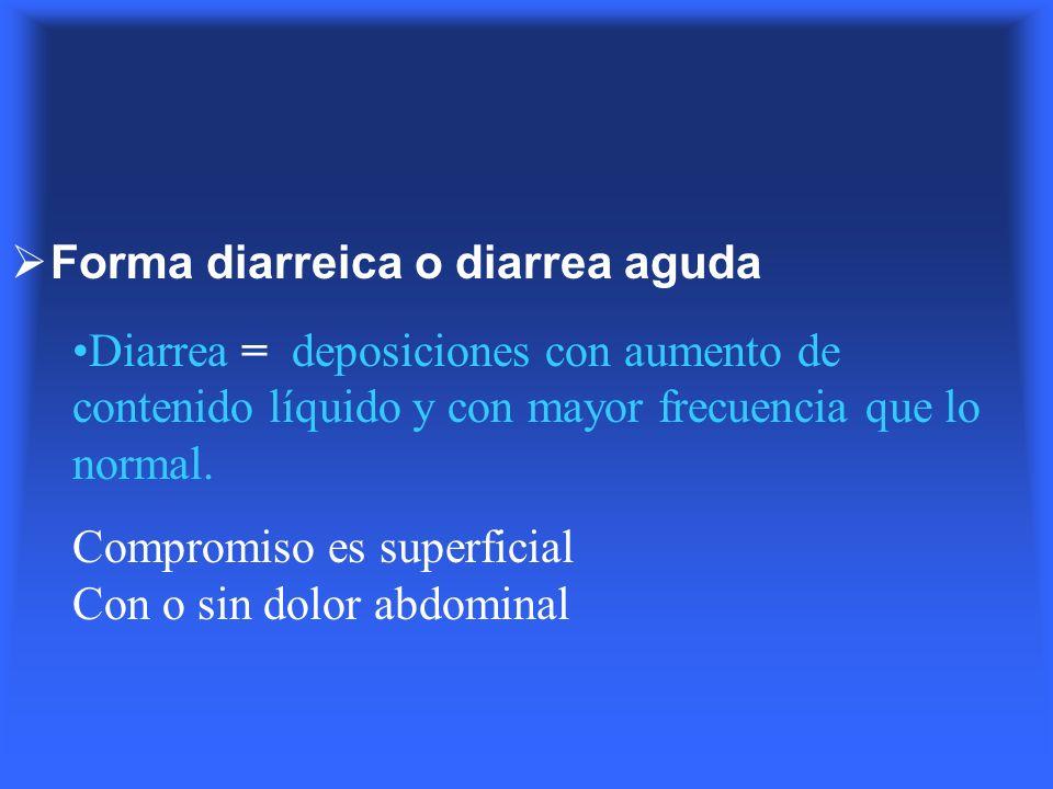 Forma diarreica o diarrea aguda