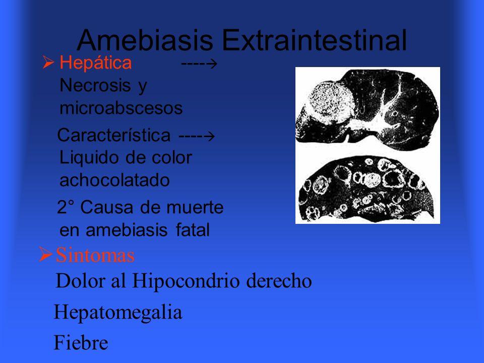 Amebiasis Extraintestinal