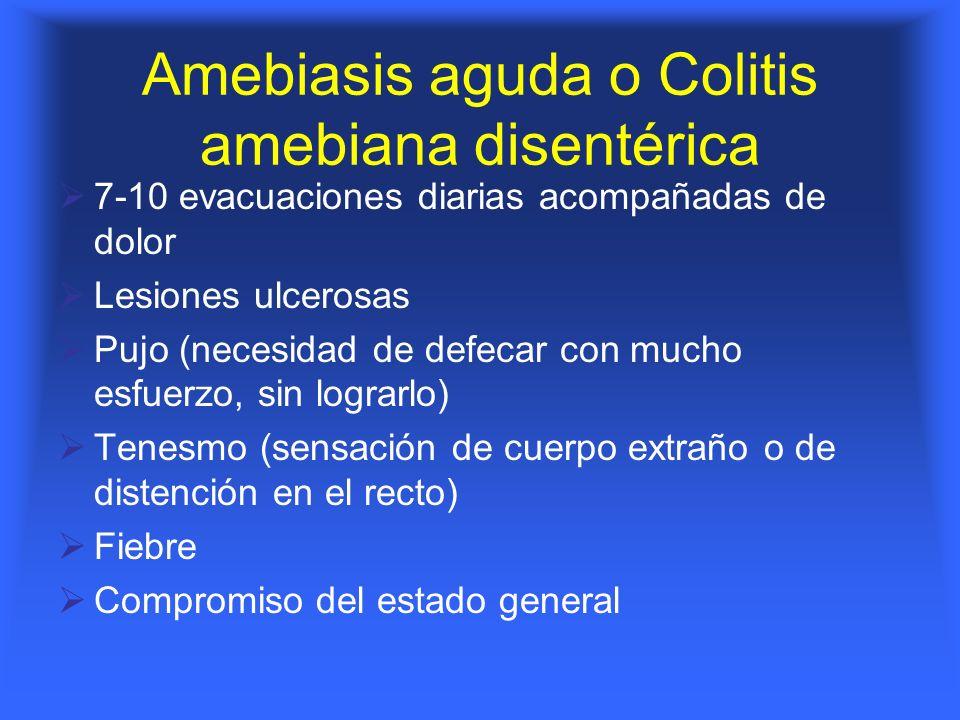 Amebiasis aguda o Colitis amebiana disentérica