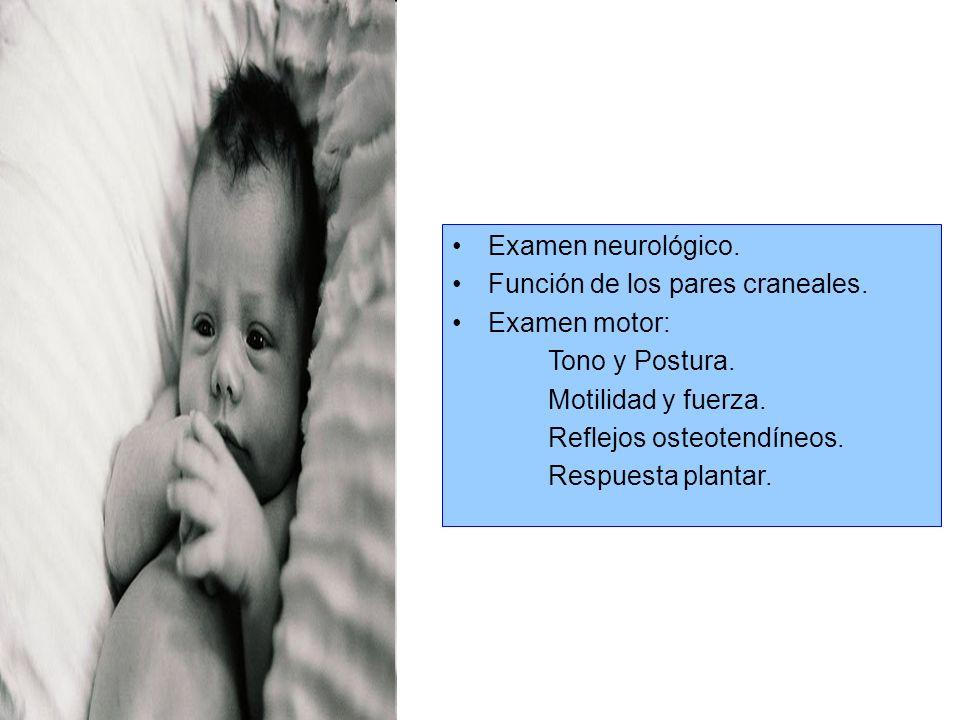 Examen neurológico.Función de los pares craneales. Examen motor: Tono y Postura. Motilidad y fuerza.