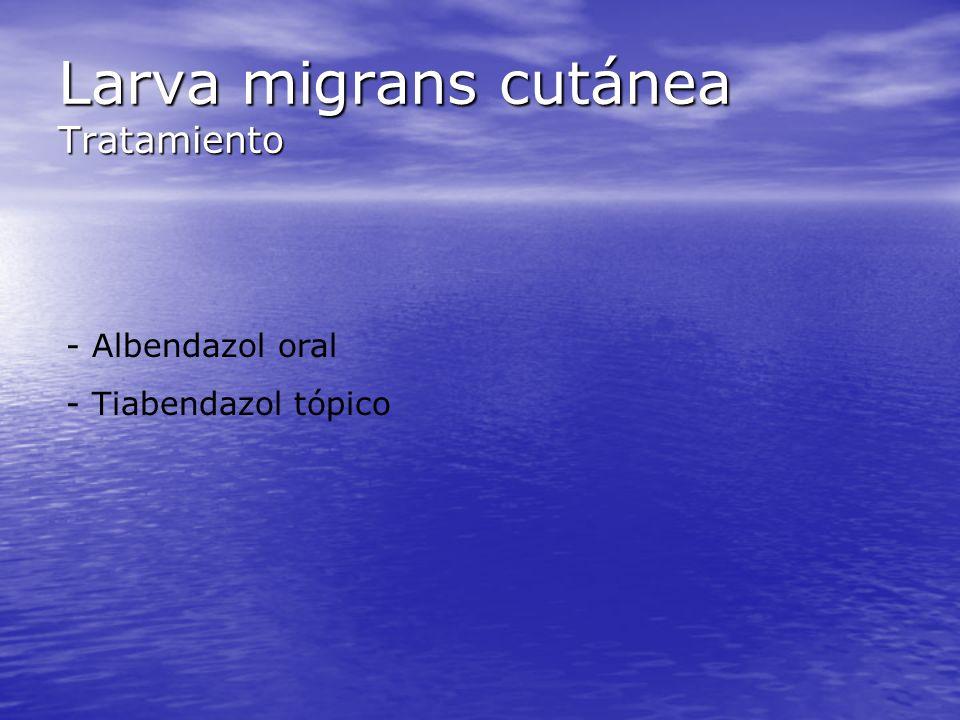 Larva migrans cutánea Tratamiento