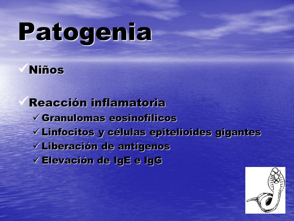 Patogenia Niños Reacción inflamatoria Granulomas eosinofílicos