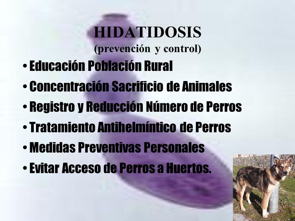HIDATIDOSIS (prevención y control)