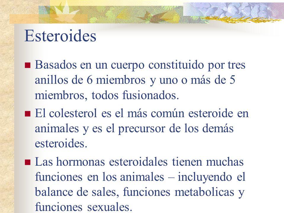 Esteroides Basados en un cuerpo constituido por tres anillos de 6 miembros y uno o más de 5 miembros, todos fusionados.
