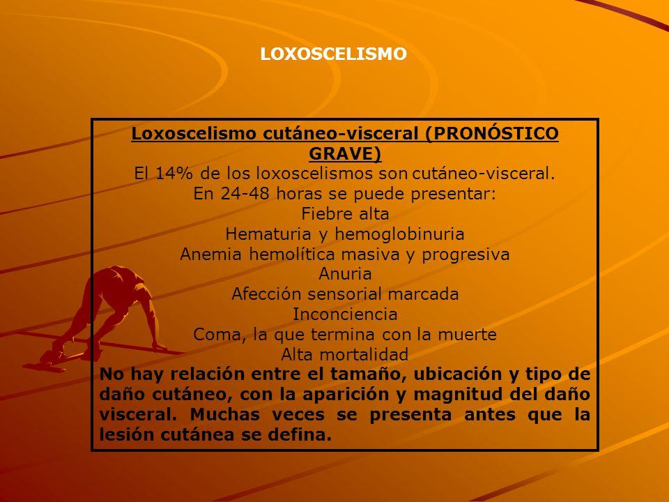 Loxoscelismo cutáneo-visceral (PRONÓSTICO GRAVE)