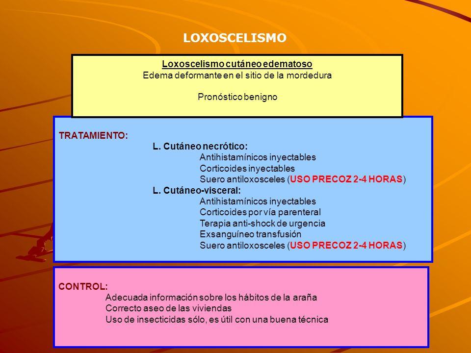 LOXOSCELISMO Loxoscelismo cutáneo edematoso