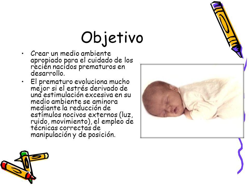 Objetivo Crear un medio ambiente apropiado para el cuidado de los recién nacidos prematuros en desarrollo.