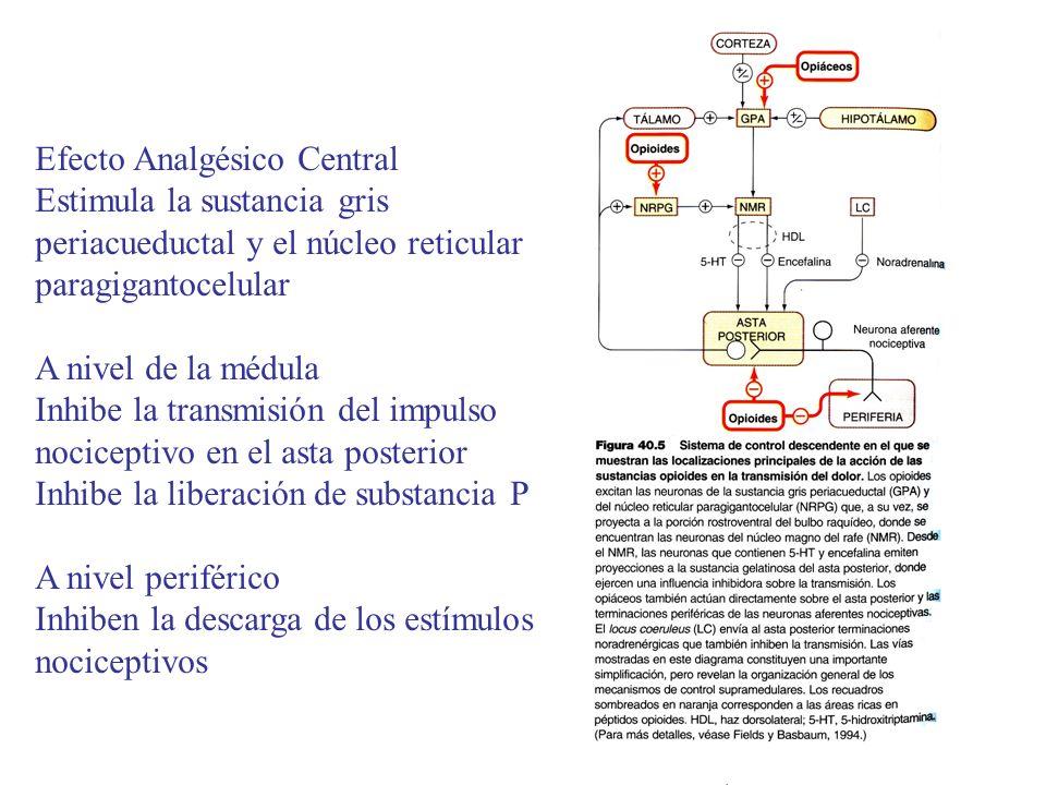 Efecto Analgésico Central
