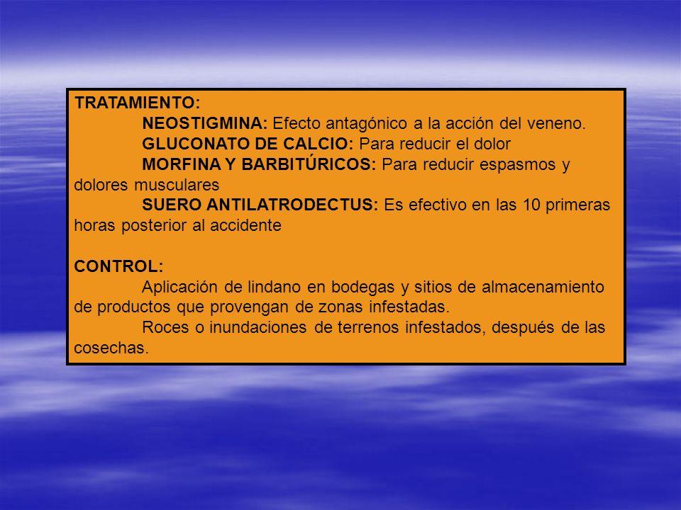 TRATAMIENTO:NEOSTIGMINA: Efecto antagónico a la acción del veneno. GLUCONATO DE CALCIO: Para reducir el dolor.