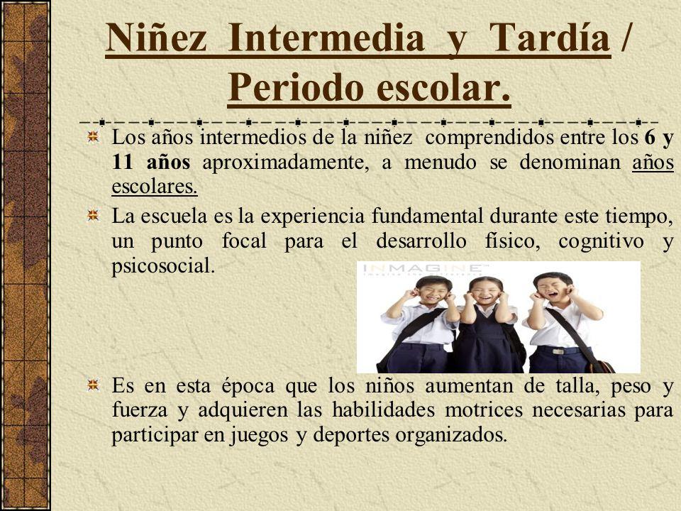 Niñez Intermedia y Tardía / Periodo escolar.