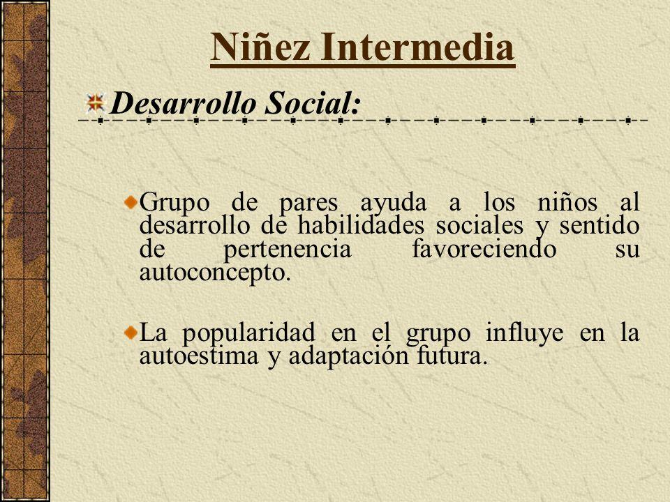 Niñez Intermedia Desarrollo Social: