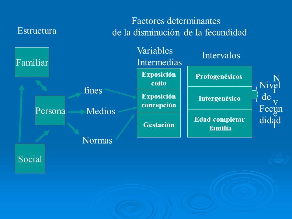 Factores determinantes de la disminución de la fecundidad Estructura