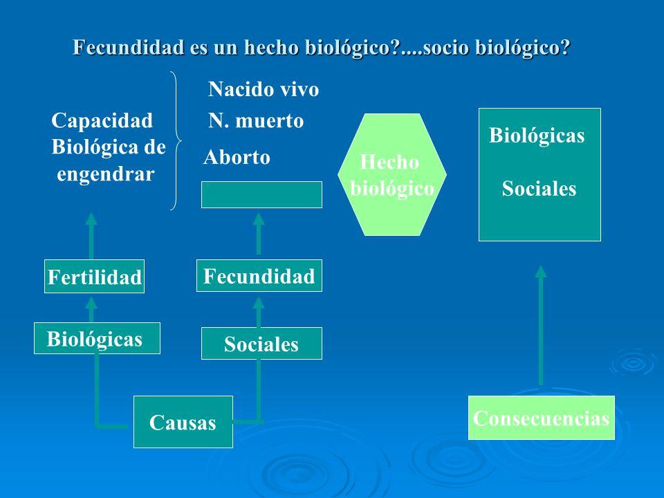 Fecundidad es un hecho biológico ....socio biológico